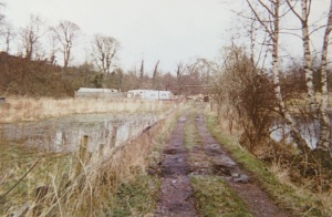1999 Niaroo, Traveller's camp