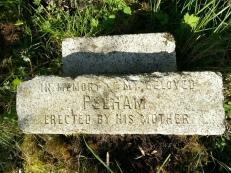 2014 Pelham Cochranes stone cleaned by Alex Rochead