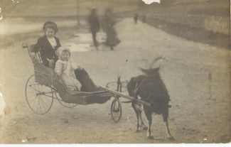 1915 Charlie and Sarah Boyle