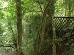 2014 The Priory Bridge Blantyre by Paul Veverka