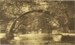 1920s Hand Bridge, (Redlees)