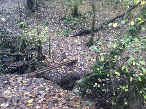2014 Stream 2 Crossing near its outfall to the Clyde, nr Livingstone Centre