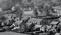 1955 Auchinraith Nurseries Main Street, HIgh Blantyre