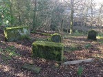 2015 Crossbasket Pet Cemetery 23rd March (PV)
