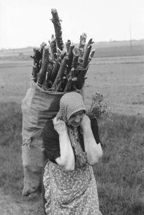 1930s firewood