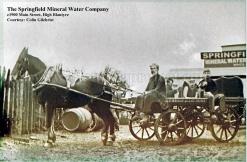 1900 Springfield Mineral Water Company wm