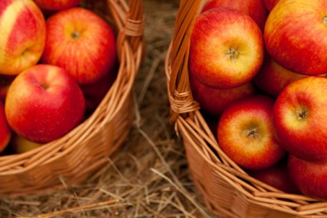 apples-in-two-baskets