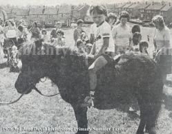 1978 DL Primary Summer Fayre