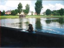 1990 Stonefield Public Park